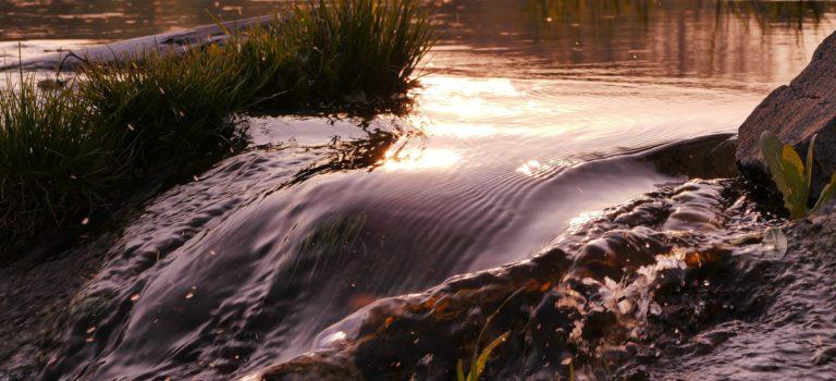 Im Flow sein – Leben im Fluss